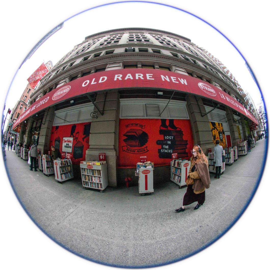 Strand Bookstore NYC Dec 2018 set 2 D.D. Teoli Jr. (1)