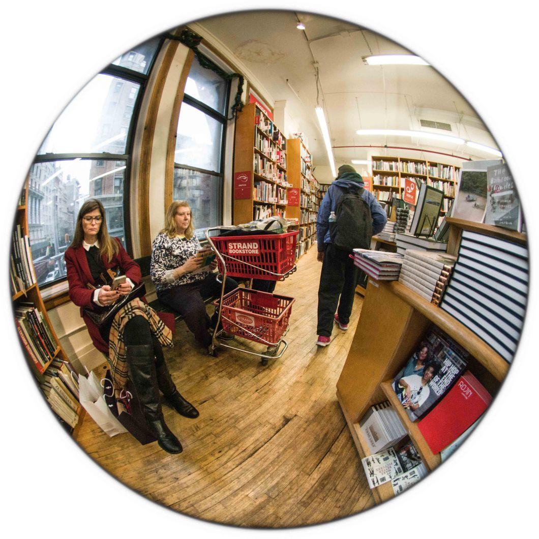 Strand Bookstore NYC Dec 2018 set 2 D.D. Teoli Jr. (36)