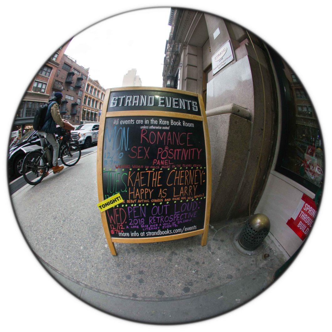 Strand Bookstore NYC Dec 2018 set 2 D.D. Teoli Jr. (7)
